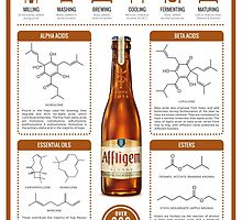 The Chemistry of Beer by Compound Interest