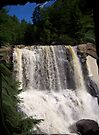 Blackwater Falls West Virginia by Allen Lucas