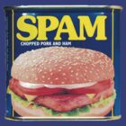 Spam Tin by Tim Topping