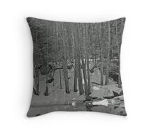 On The Mill  Throw Pillow