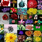Floral Collage 2 by khadhy