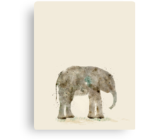 little elephant Canvas Print