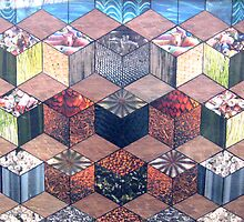 30 - HEXAGON DESIGN - 01 - DAVE EDWARDS - COLLAGE by BLYTHART