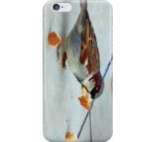 Bread in beak, beak in bread iPhone Case/Skin