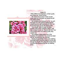 PSALM 23 COLLECTION by Shoshonan