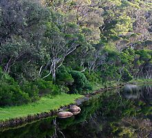 Wilsons Promontory Reflections by Dave Law