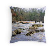 Richmond Falls Throw Pillow