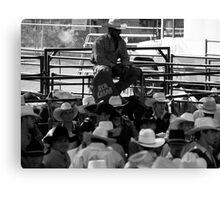 Cowboys 1 Canvas Print