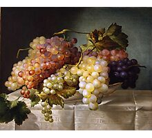 Still life with grapes in a porcelain dish (c. 1850 Austria) by Colnaghi Photographic Print