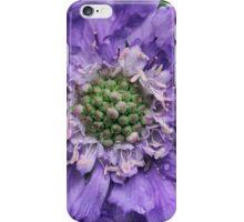 Pretty Purple spring flower iPhone Case/Skin