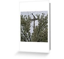Holly Springs, Mississippi Greeting Card