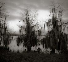Swampland by Rachel Blumenthal