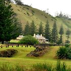 Norfolk Island towards Quality Row by Bev Woodman