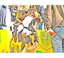 Veal Photographic Print