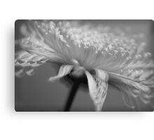 Just a memory... Canvas Print