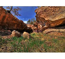 Rock Hollow Ravine - - HDR Photographic Print