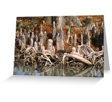 Cypress Knees Greeting Card