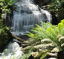 Triplet Falls, Victoria by Catherine C.  Turner