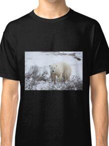 Polar Bear in the Arctic Willow Classic T-Shirt