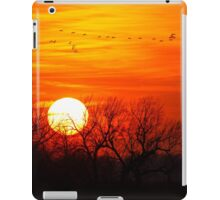 Sandhills Delight iPad Case/Skin