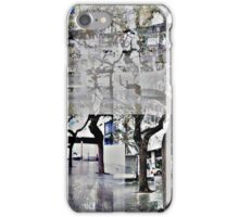 CAM02179-CAM02182_GIMP_A iPhone Case/Skin