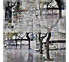 CAM02179-CAM02182_GIMP_A Photographic Print