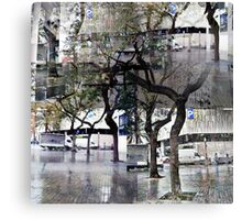 CAM02179-CAM02182_GIMP_B Canvas Print