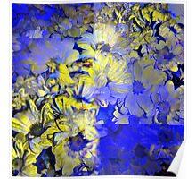 CAM02227-CAM02230_GIMP_A Poster