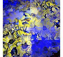 CAM02227-CAM02230_GIMP_A Photographic Print