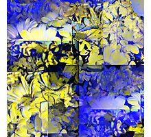 CAM02227-CAM02230_GIMP_B Photographic Print