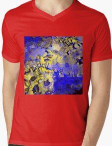 CAM02227-CAM02230_GIMP_A Mens V-Neck T-Shirt