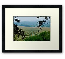 Bumper Crop Framed Print