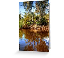 The Murray River & Young River Red Gums  Greeting Card