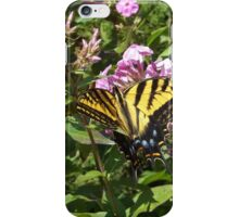 Butterfly Close-Up, Canyon Road, Santa Fe, New Mexico iPhone Case/Skin
