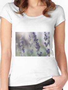 Lavender sprigs in the Spring Women's Fitted Scoop T-Shirt