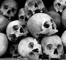 Victims of Pol Pot's Cambodian regime by John Mitchell