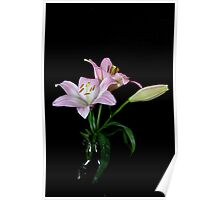 Lilies in Jar Poster