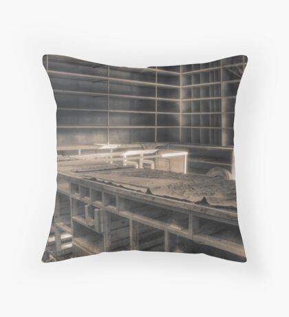 'Everything gone' (hdr) Throw Pillow