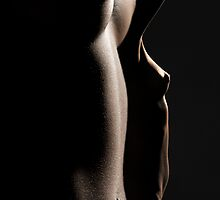 BODYSCAPES by FRANK SARTORI