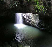 Natural Arch Numinbah Valley Waterfall #2 by Virginia McGowan