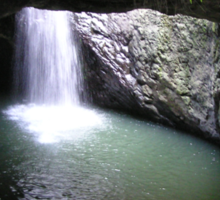 Natural Arch Numinbah Valley Waterfall #2 Sticker
