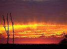 """Blazing Sunrise"" by debsphotos"