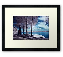 Everlasting Gaze Framed Print