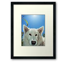 Chasta Framed Print