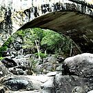Hand Built Bridge in Paluma Range National Park. Queensland by Chris  Willis