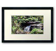 Waterfall at Araluen Botanic Park. Western Australia Framed Print