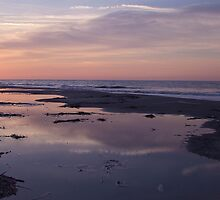 carolina sunrise  by g richard anderson