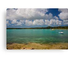Isle of Pines E Canvas Print