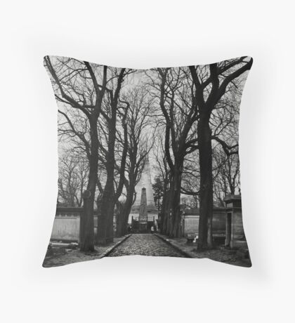 Winter path Throw Pillow
