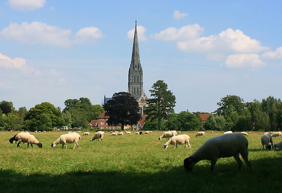 Salisbury Cathedral from the meadows by naffarts